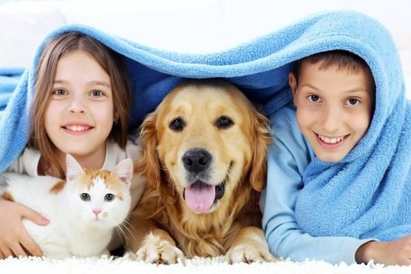 Дети и домашние животные: кто, когда и зачем